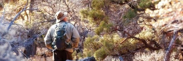 En tur i klitterne